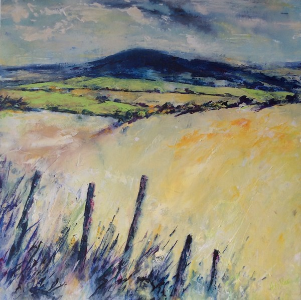 """Fields of Knocklayde""  70x70 cms.  Available at IN THE MOUNT, Ballycastle."""